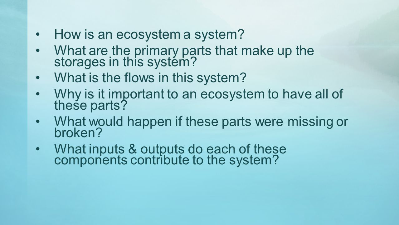 How is an ecosystem a system