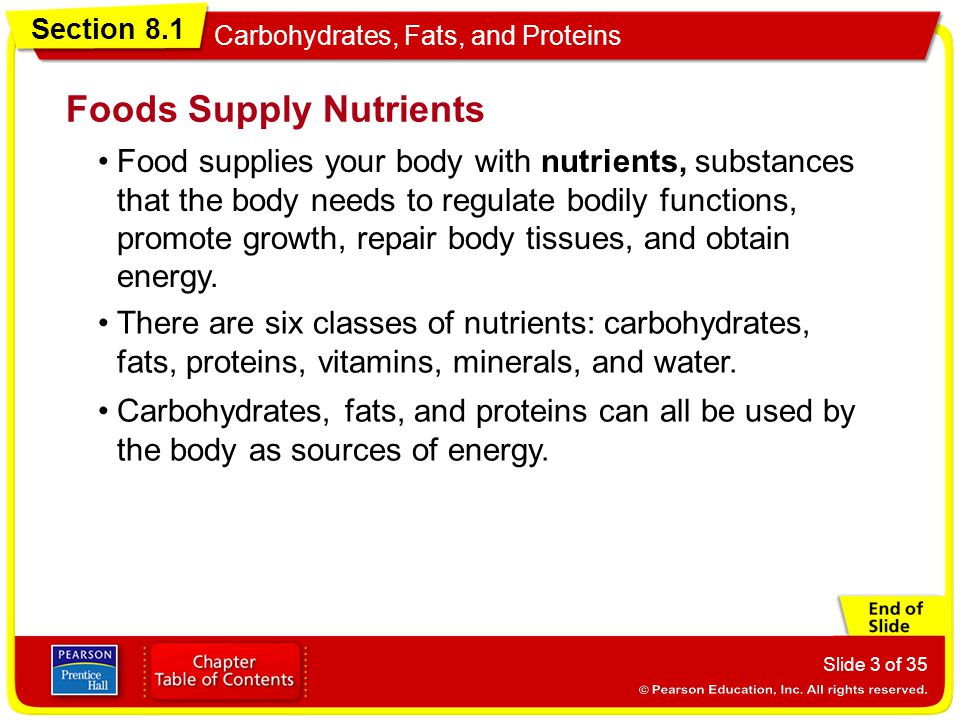 Foods Supply Nutrients
