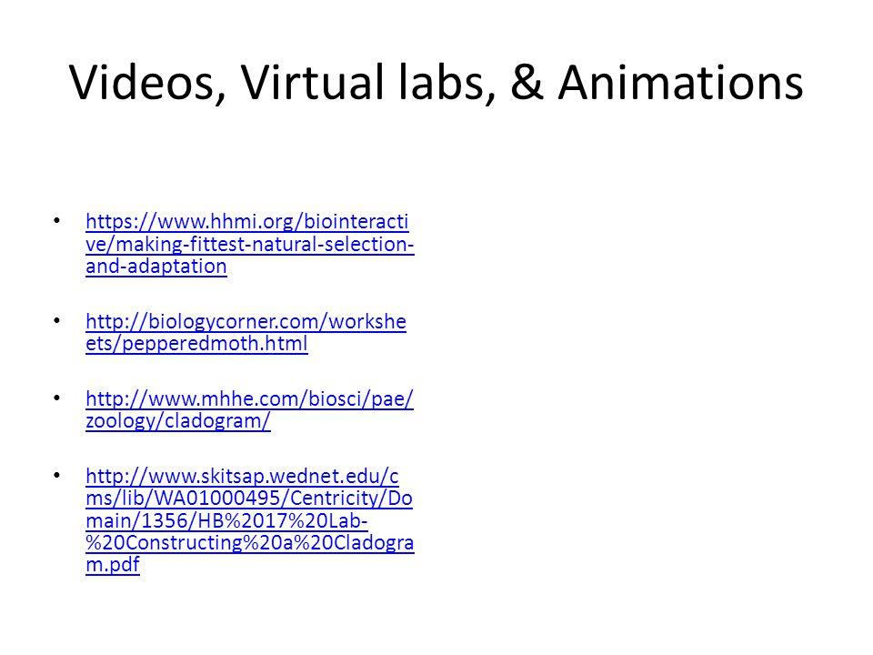 Videos, Virtual labs, & Animations
