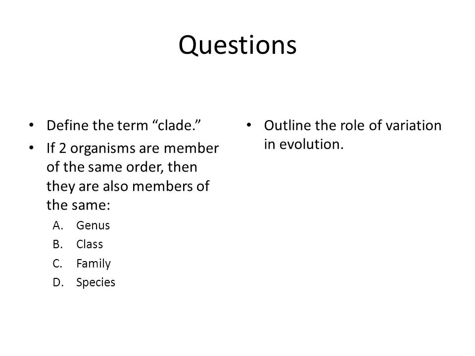 Questions Define the term clade.