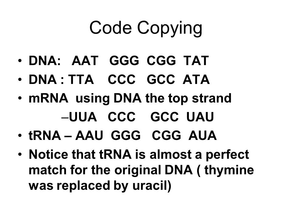 Code Copying DNA: AAT GGG CGG TAT DNA : TTA CCC GCC ATA