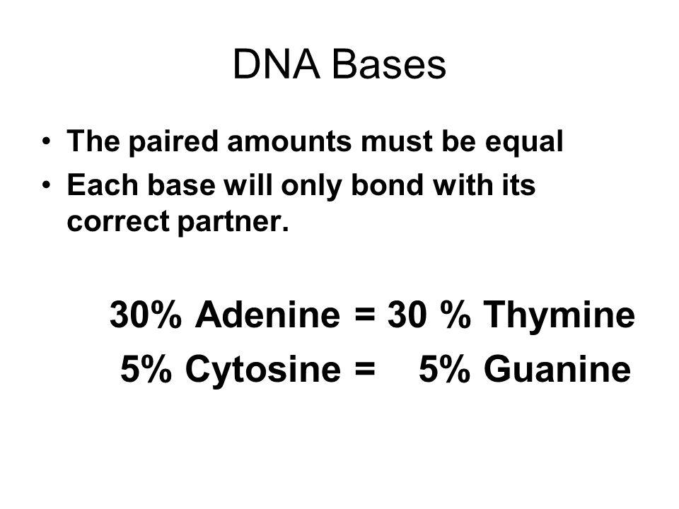 DNA Bases 30% Adenine = 30 % Thymine 5% Cytosine = 5% Guanine