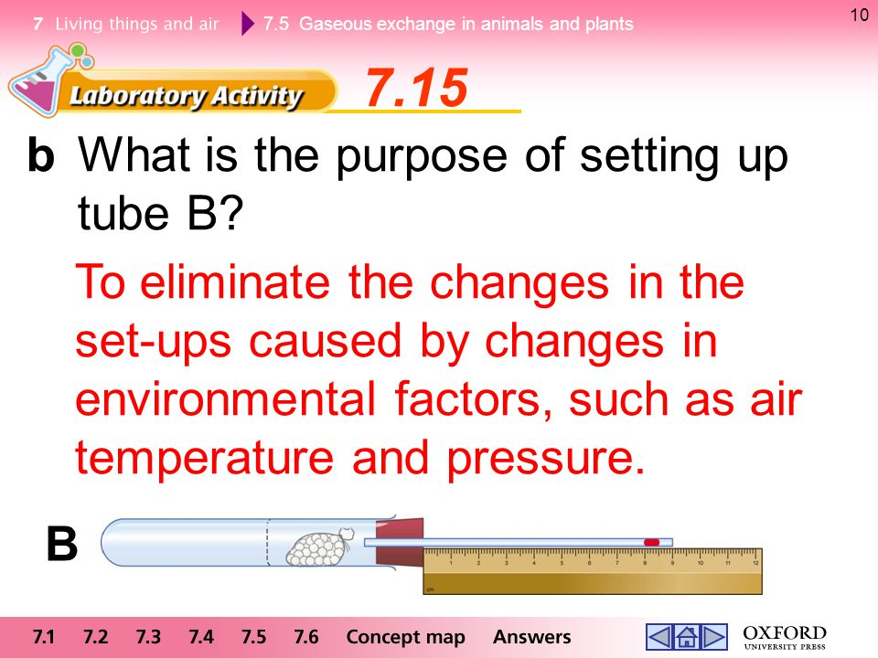 7.15 b What is the purpose of setting up tube B