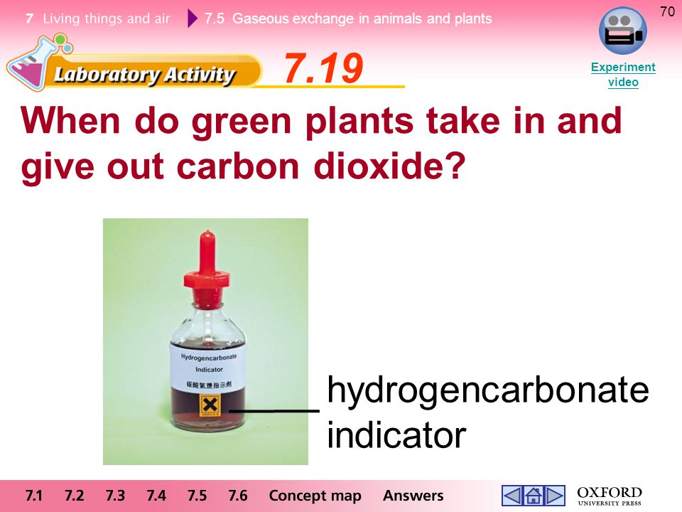 7.19 When do green plants take in and give out carbon dioxide