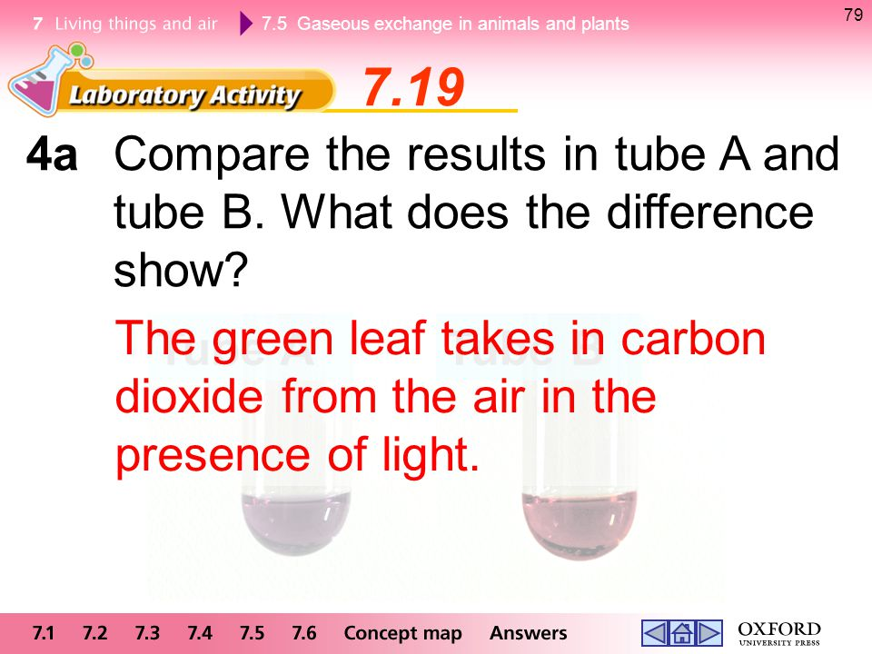 79 7.19. 4a Compare the results in tube A and tube B. What does the difference show
