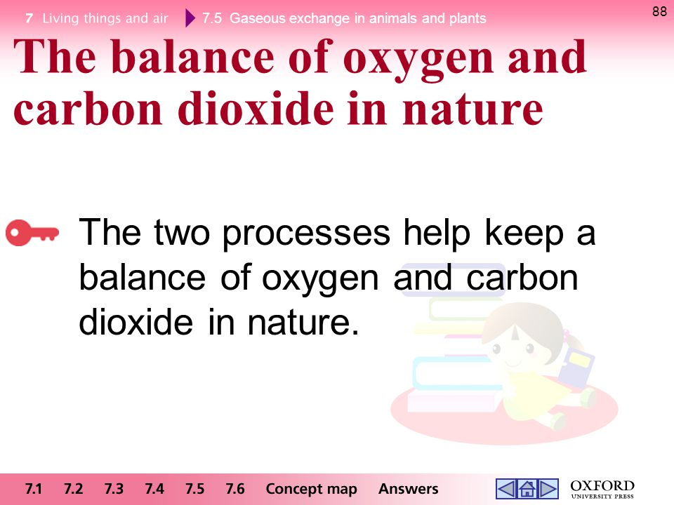 The balance of oxygen and carbon dioxide in nature
