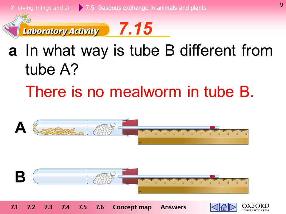 7.15 a In what way is tube B different from tube A