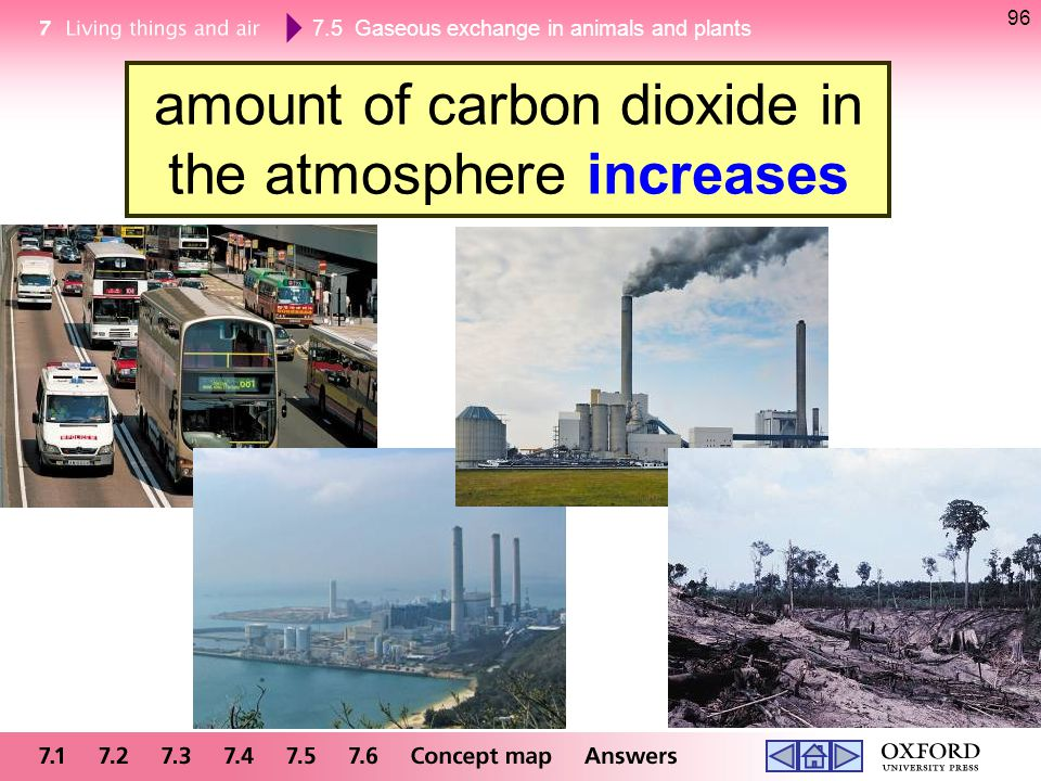 amount of carbon dioxide in the atmosphere increases