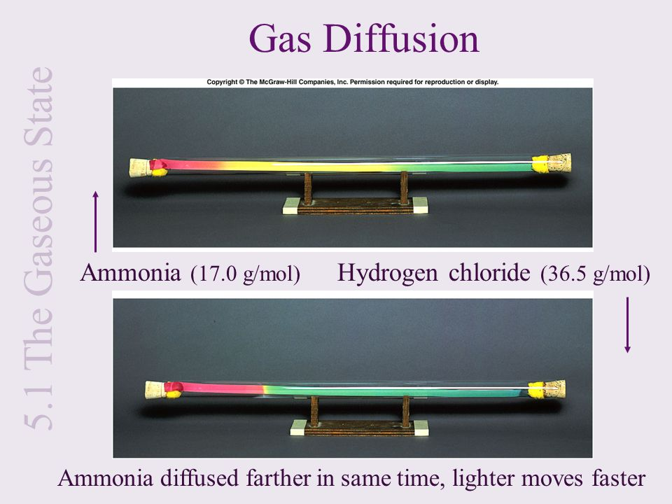Gas Diffusion 5.1 The Gaseous State Ammonia (17.0 g/mol)