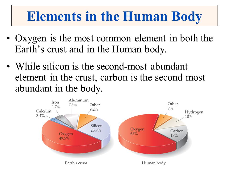 Elements in the Human Body