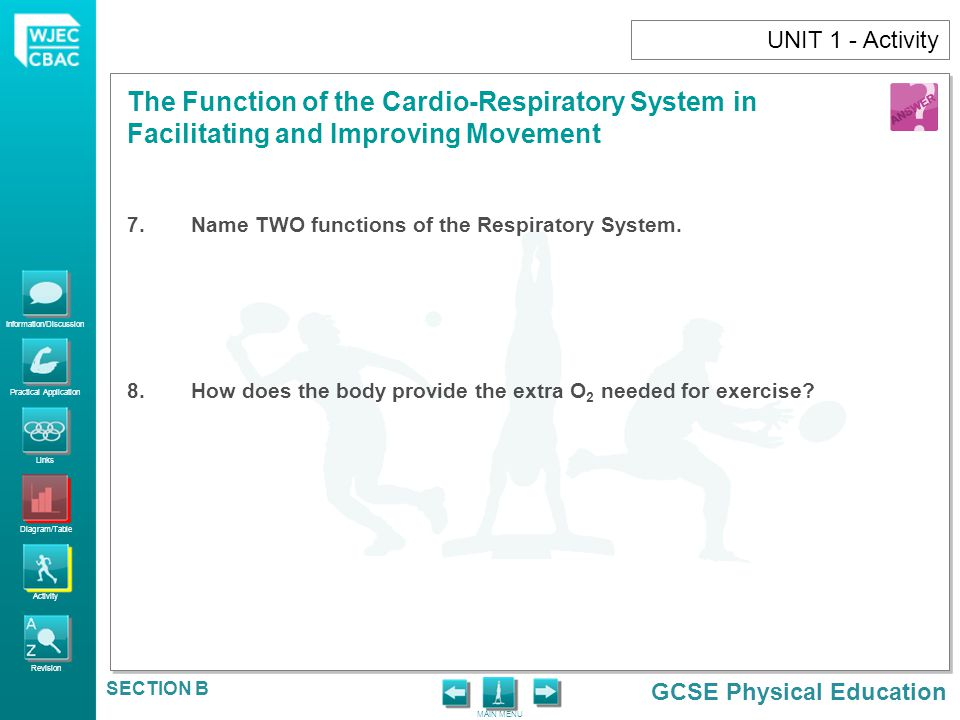 UNIT 1 - Activity Name TWO functions of the Respiratory System.