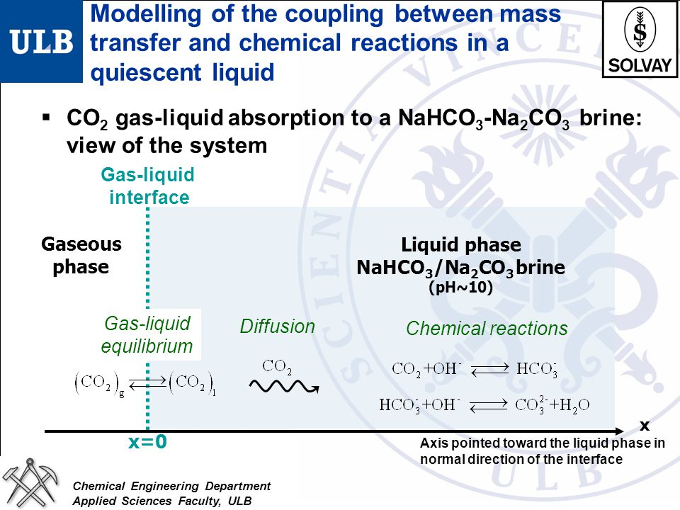 Modelling of the coupling between mass transfer and chemical reactions in a quiescent liquid