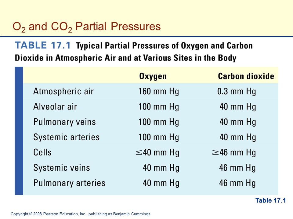 O2 and CO2 Partial Pressures