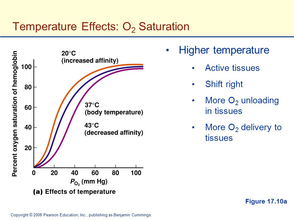 Temperature Effects: O2 Saturation