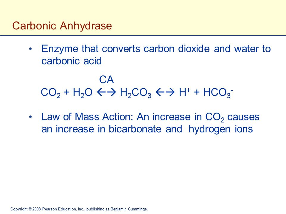 Carbonic Anhydrase CA CO2 + H2O  H2CO3  H+ + HCO3-