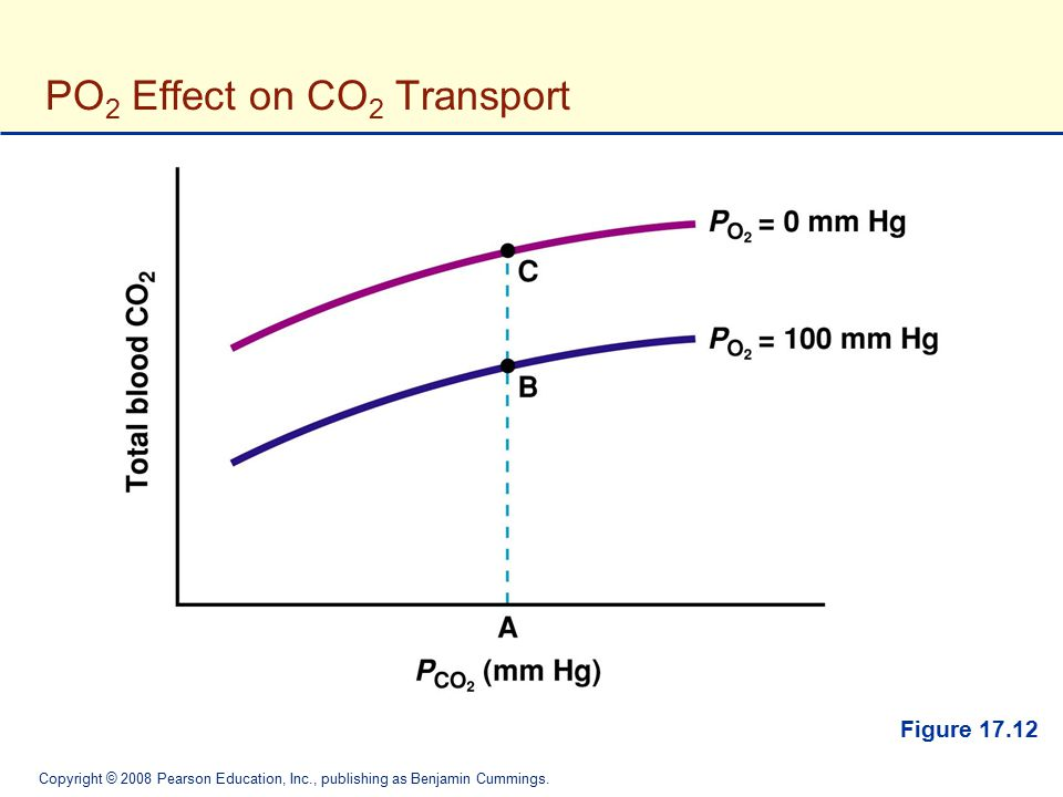 PO2 Effect on CO2 Transport