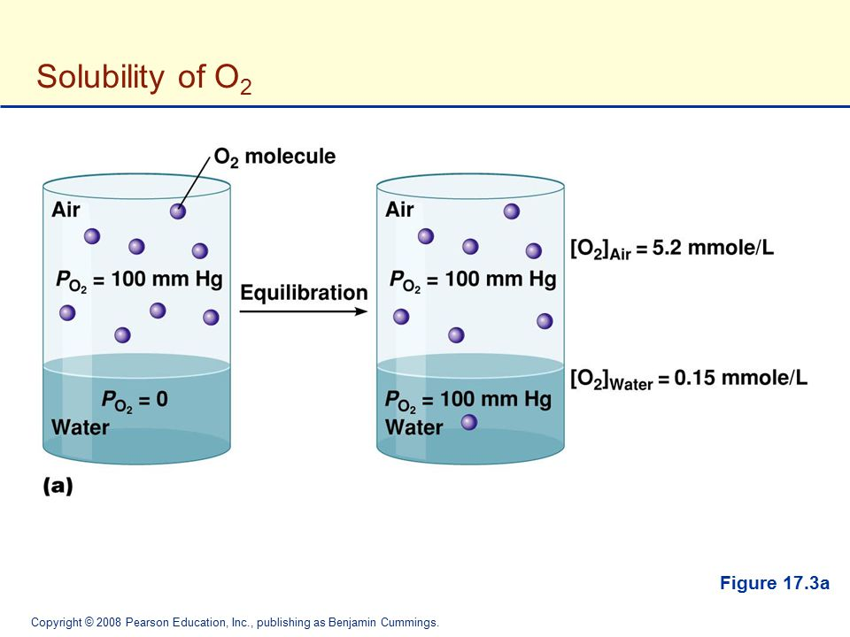 Solubility of O2 Figure 17.3a