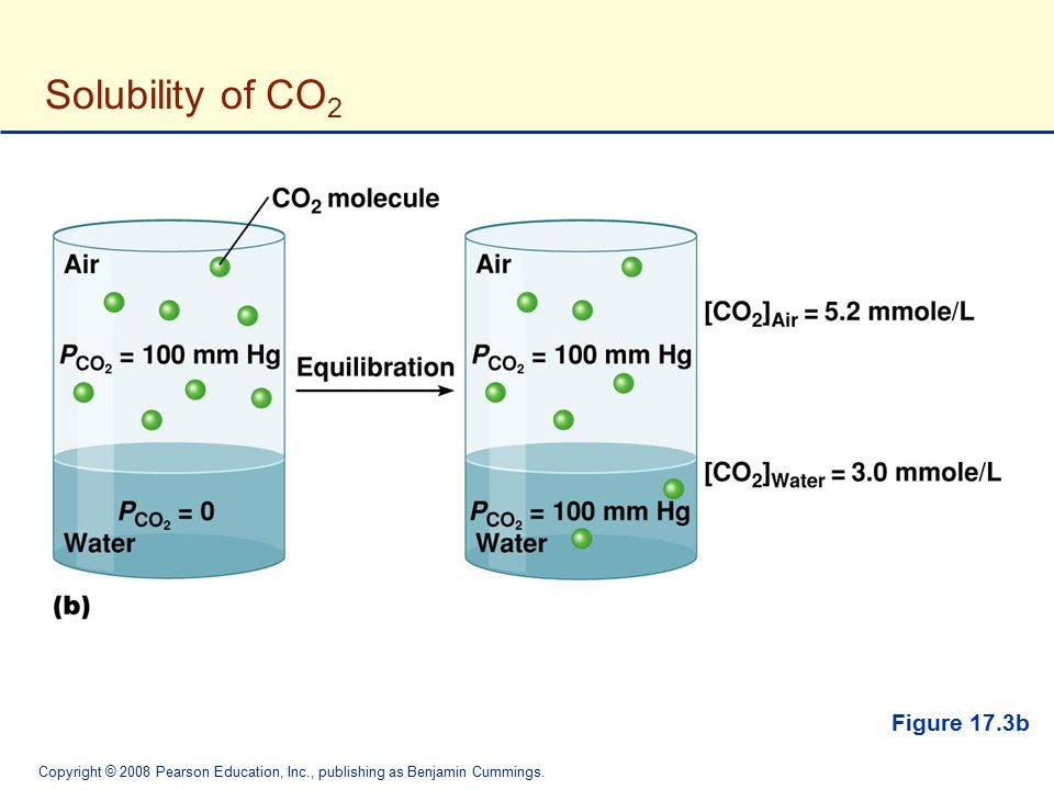Solubility of CO2 Figure 17.3b