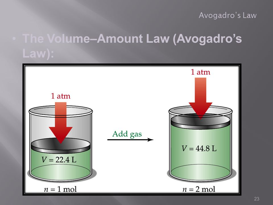The Volume–Amount Law (Avogadro's Law):
