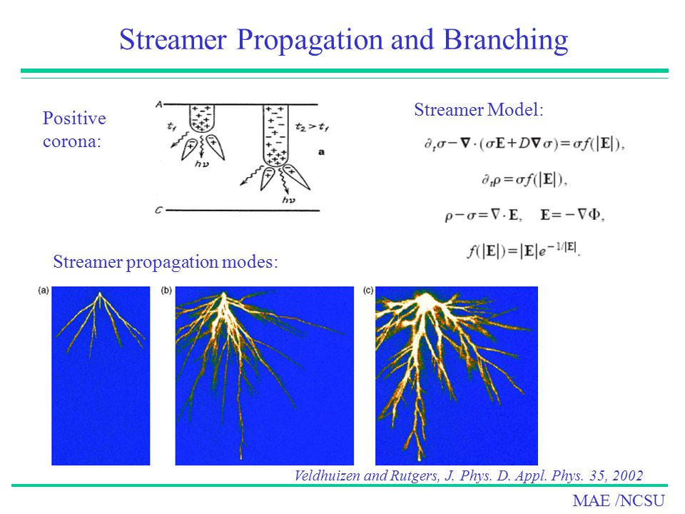 Streamer Propagation and Branching