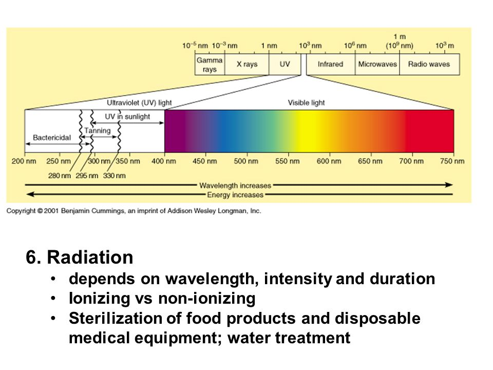 6. Radiation depends on wavelength, intensity and duration