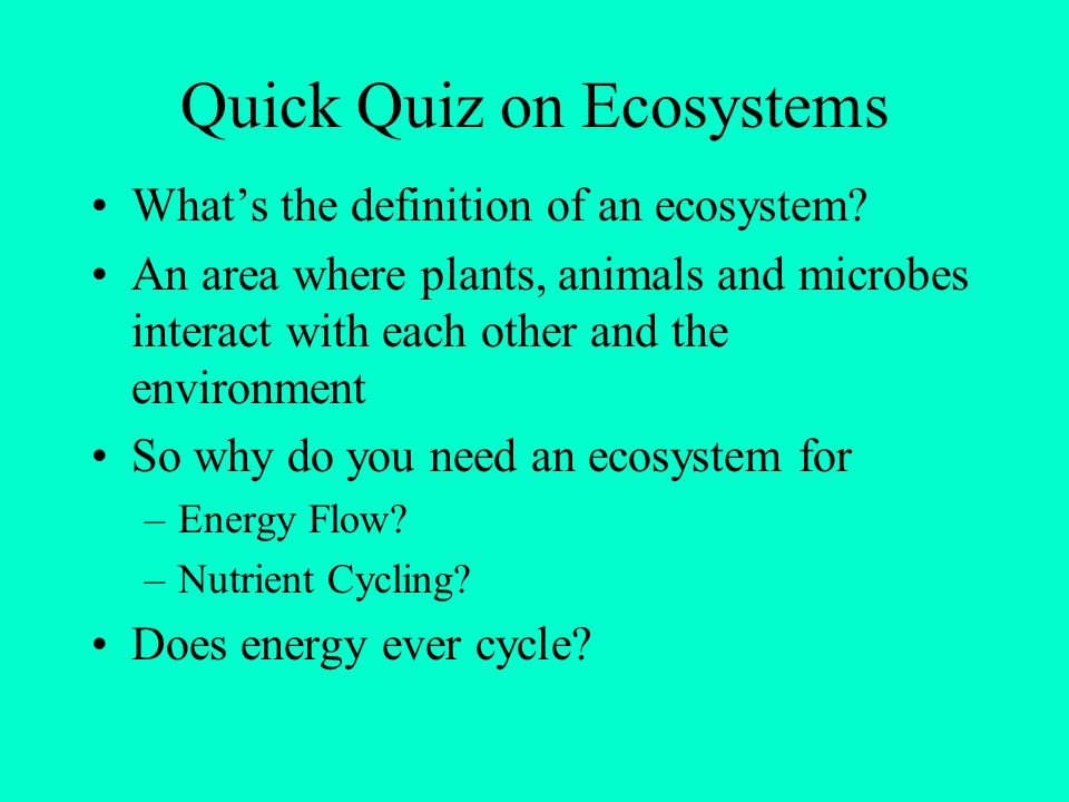 Quick Quiz on Ecosystems