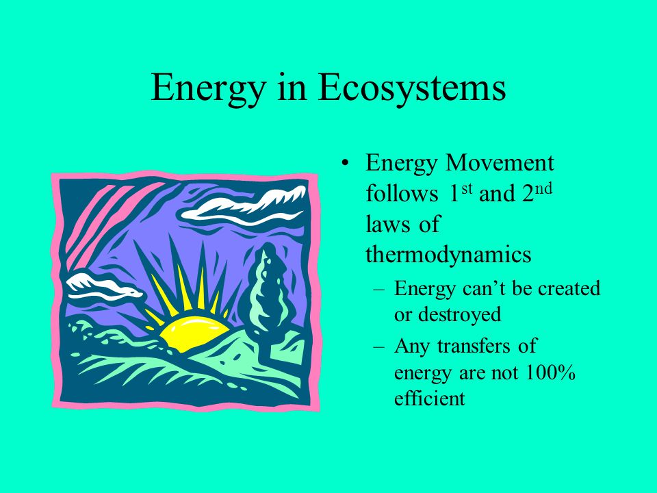 Energy in Ecosystems Energy Movement follows 1st and 2nd laws of thermodynamics. Energy can't be created or destroyed.