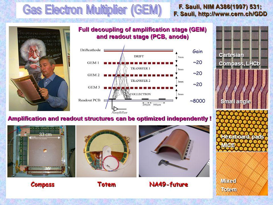 Gas Electron Multiplier (GEM)