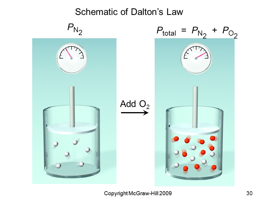 Schematic of Dalton's Law