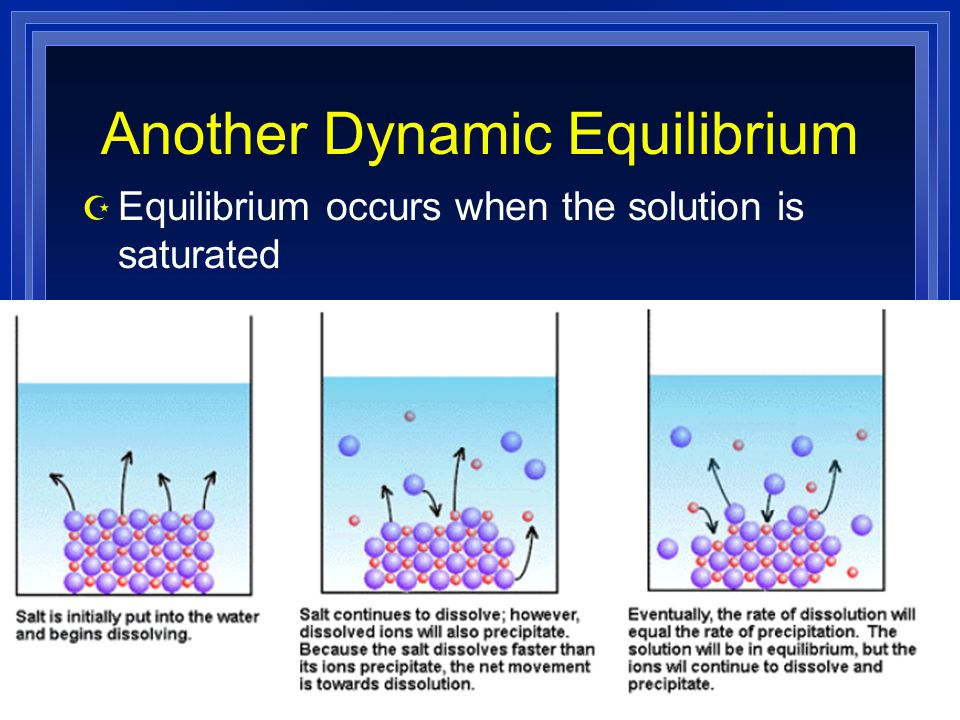 Another Dynamic Equilibrium