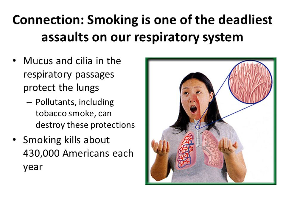 Connection: Smoking is one of the deadliest assaults on our respiratory system