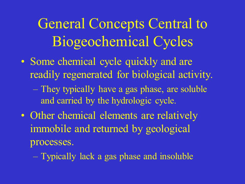 General Concepts Central to Biogeochemical Cycles
