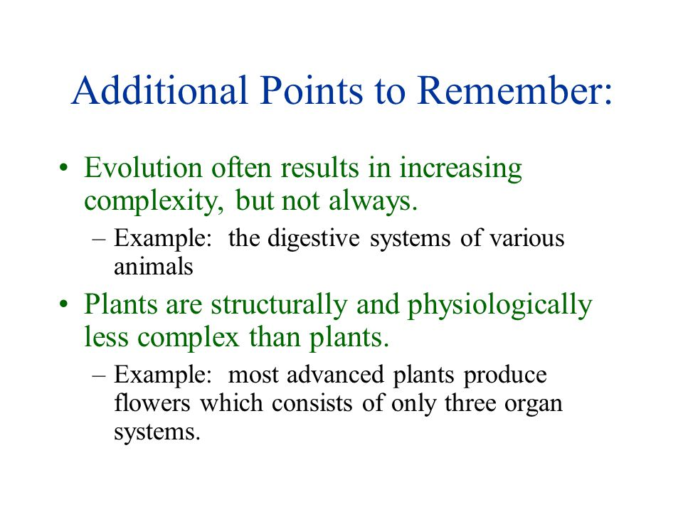 Additional Points to Remember: