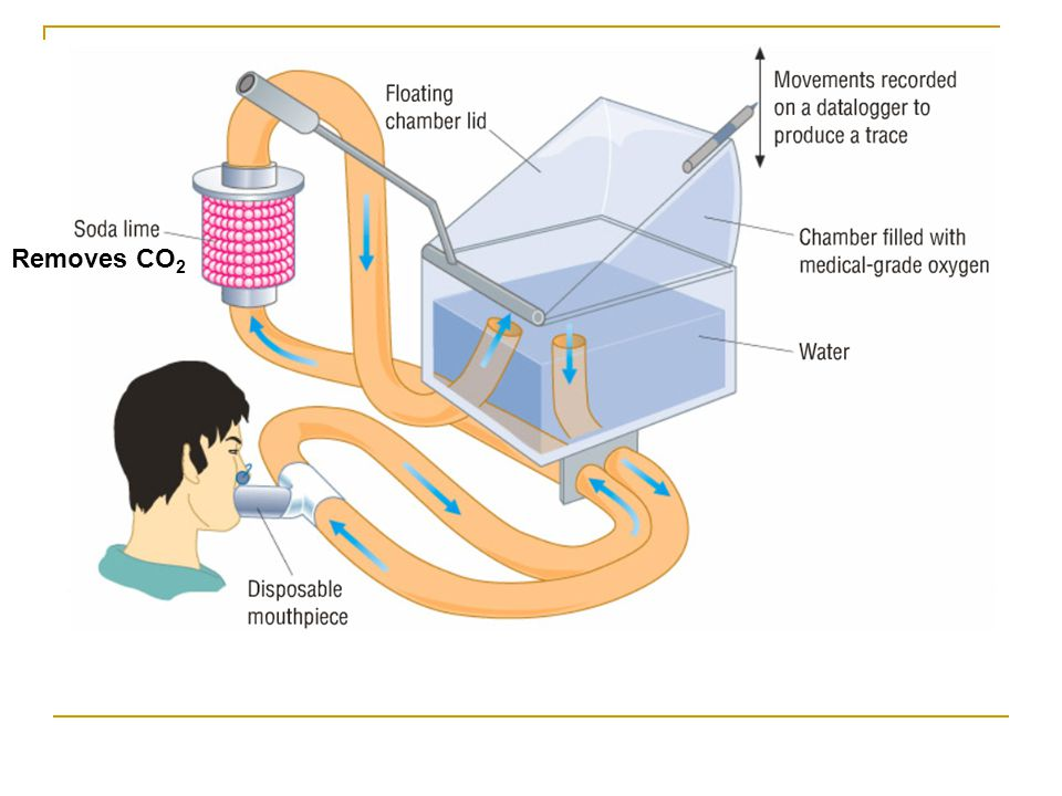 Removes CO2