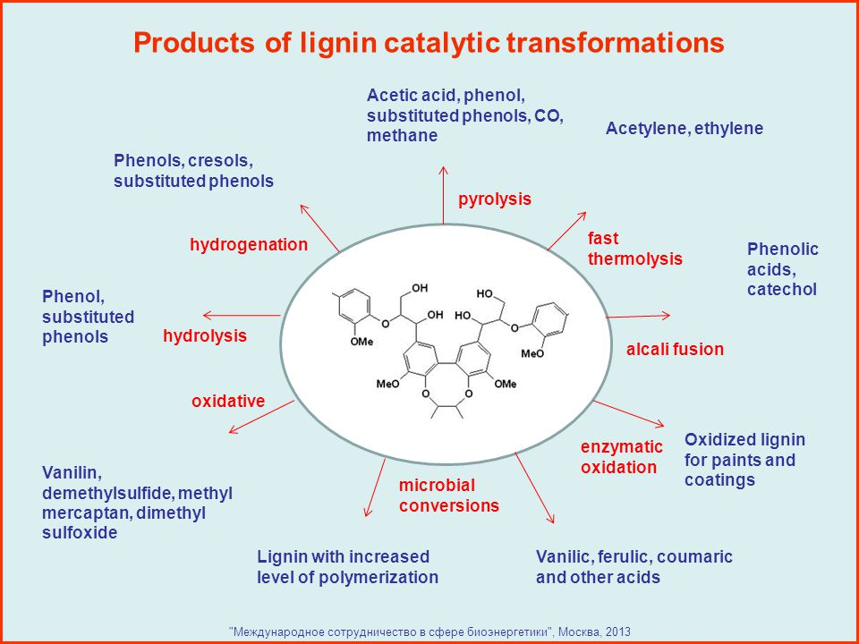Products of lignin catalytic transformations