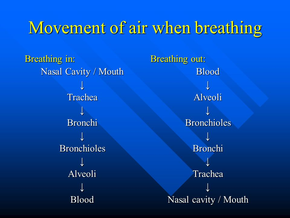 Movement of air when breathing