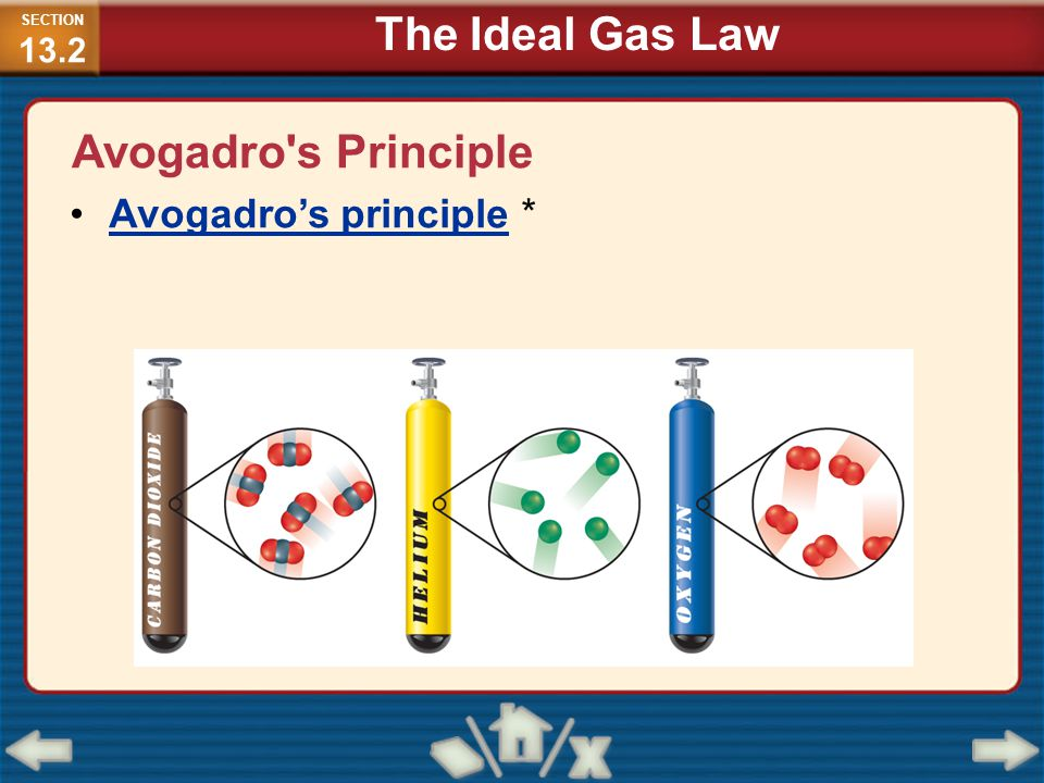 The Ideal Gas Law Avogadro s Principle Avogadro's principle *