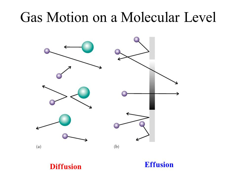 Gas Motion on a Molecular Level