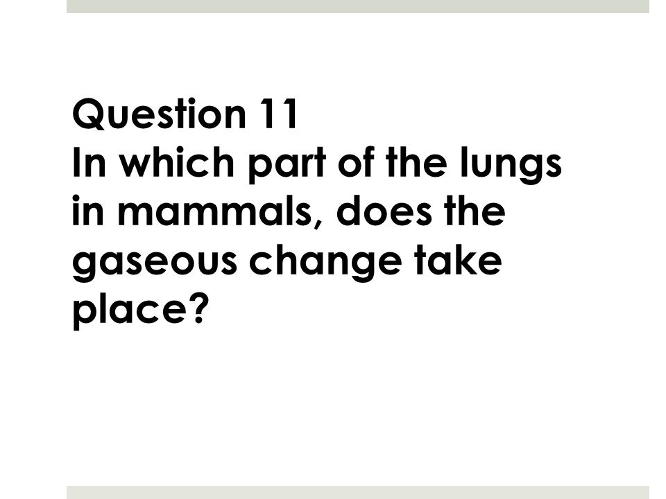 Question 11 In which part of the lungs in mammals, does the gaseous change take place