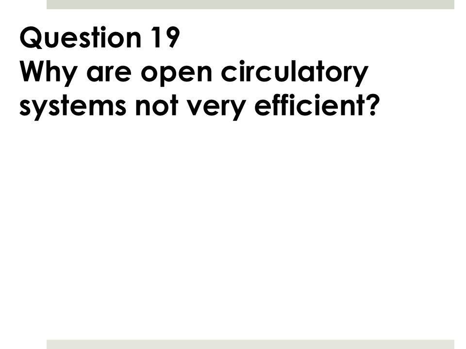 Question 19 Why are open circulatory systems not very efficient