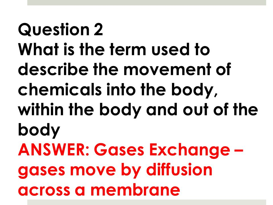Question 2 What is the term used to describe the movement of chemicals into the body, within the body and out of the body.