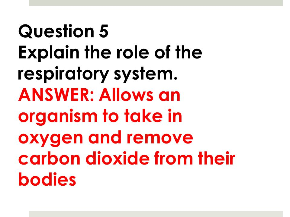Question 5 Explain the role of the respiratory system.