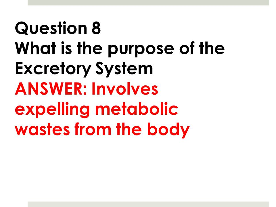 Question 8 What is the purpose of the Excretory System.