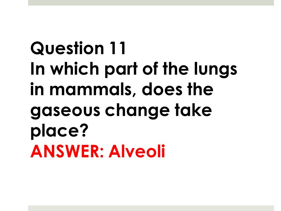 Question 11 In which part of the lungs in mammals, does the gaseous change take place.