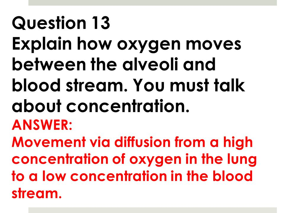 Question 13 Explain how oxygen moves between the alveoli and blood stream. You must talk about concentration.