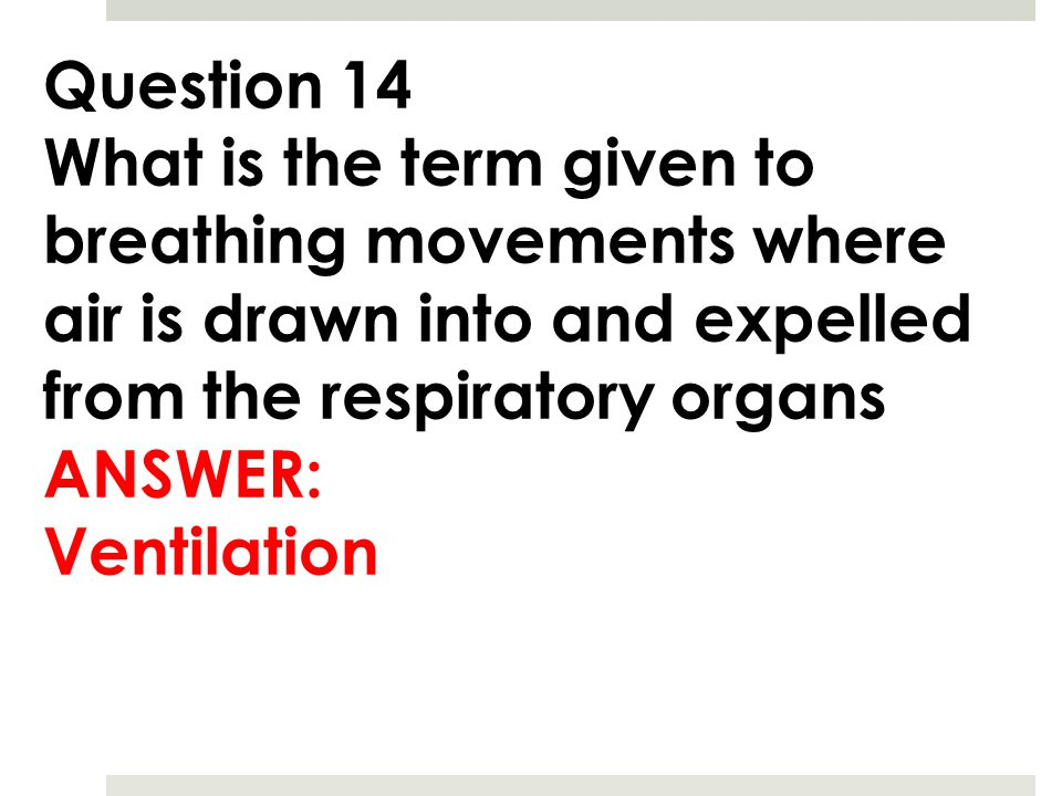 Question 14 What is the term given to breathing movements where air is drawn into and expelled from the respiratory organs.