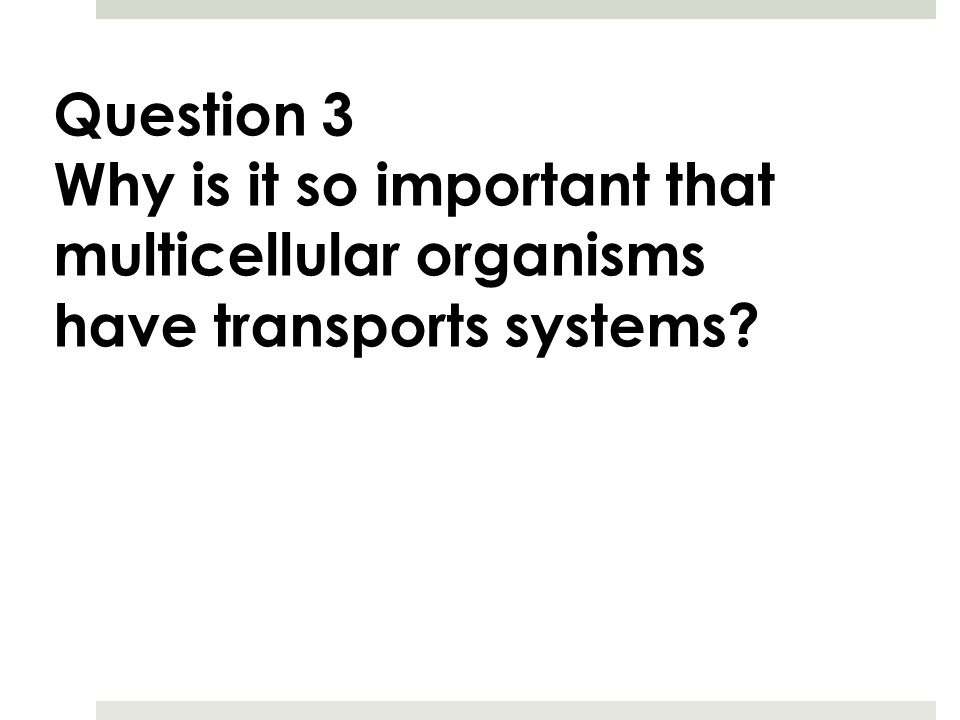 Question 3 Why is it so important that multicellular organisms have transports systems