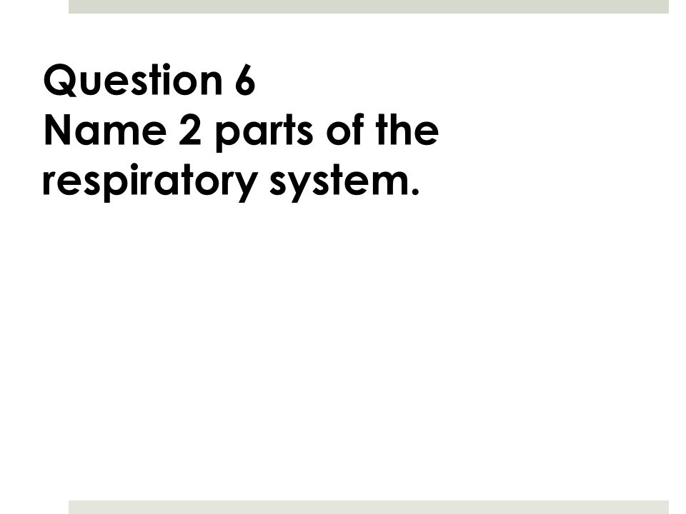 Question 6 Name 2 parts of the respiratory system.