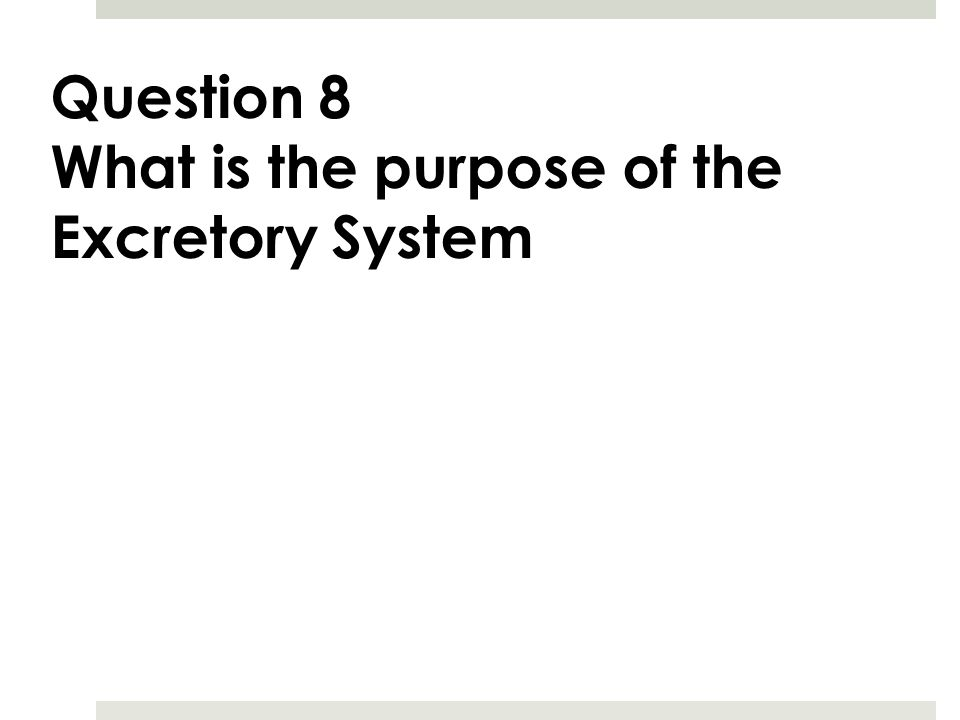 Question 8 What is the purpose of the Excretory System