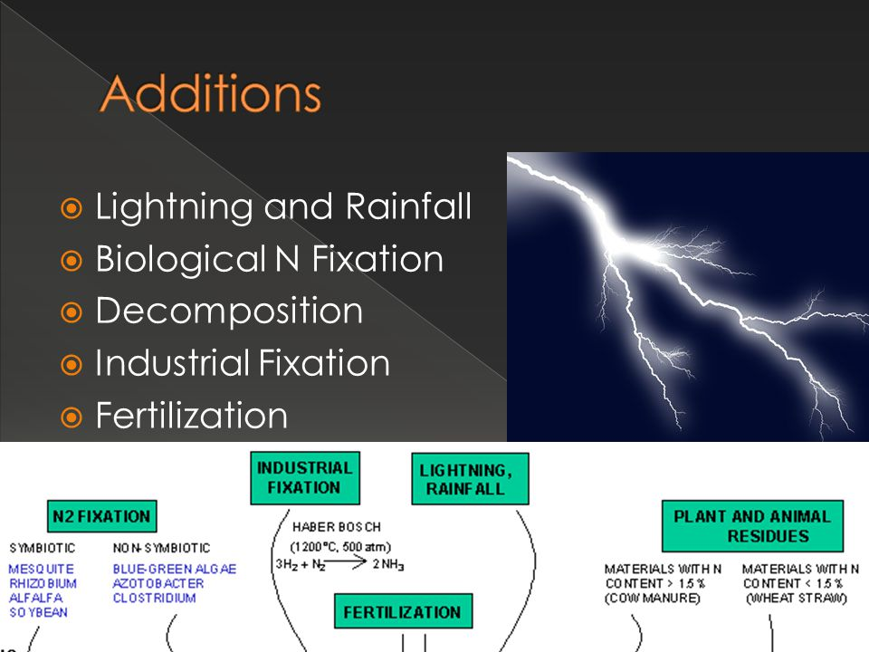 Additions Lightning and Rainfall Biological N Fixation Decomposition